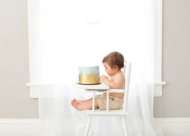 Gunnar Turns One | Baby Smash Cake Session | Whimsee Art Photography