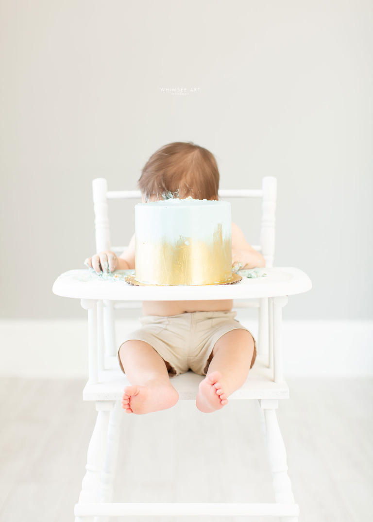 Baby Cake Smash Photography Session | Baby Photography Roanoke Virginia | Whimsee Art Photography