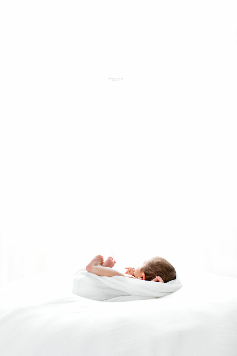 Baby Bodie | Roanoke Newborn Photographers | Whimsee Art Photography