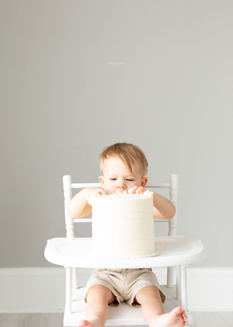 Benny Turns One | Roanoke Family Photographer |Whimsee Art Photography